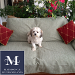 Madison & Mulholland - Anti-Odor Pet Throw